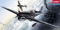 Истребитель P-40 Warhawk