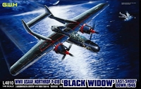 Ночной истребитель WWII USAAF Northrop P-61B Black Widow Last Shoot Down 1945
