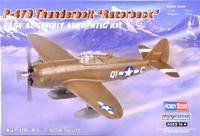 Бомбардировщик P-47D Thunderbolt